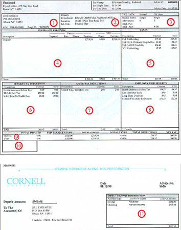 Understanding Your Paper Pay Stub | Cornell University Division of ...